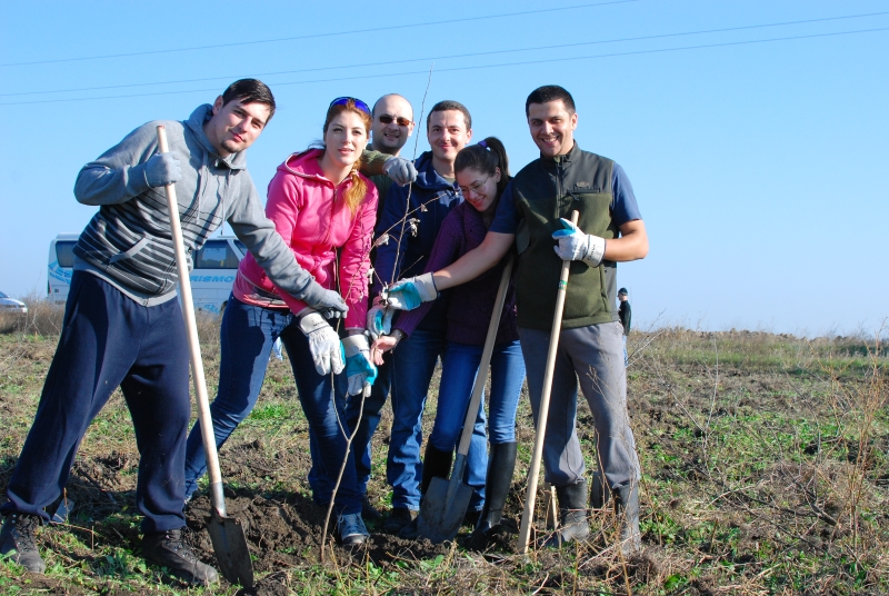 Planting Trees Luxoft Team Romania